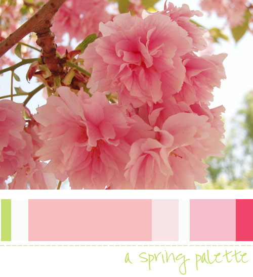 a-spring-palette4